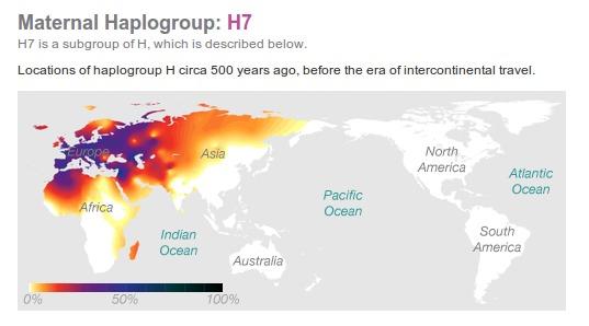 Haplogrupo Materno